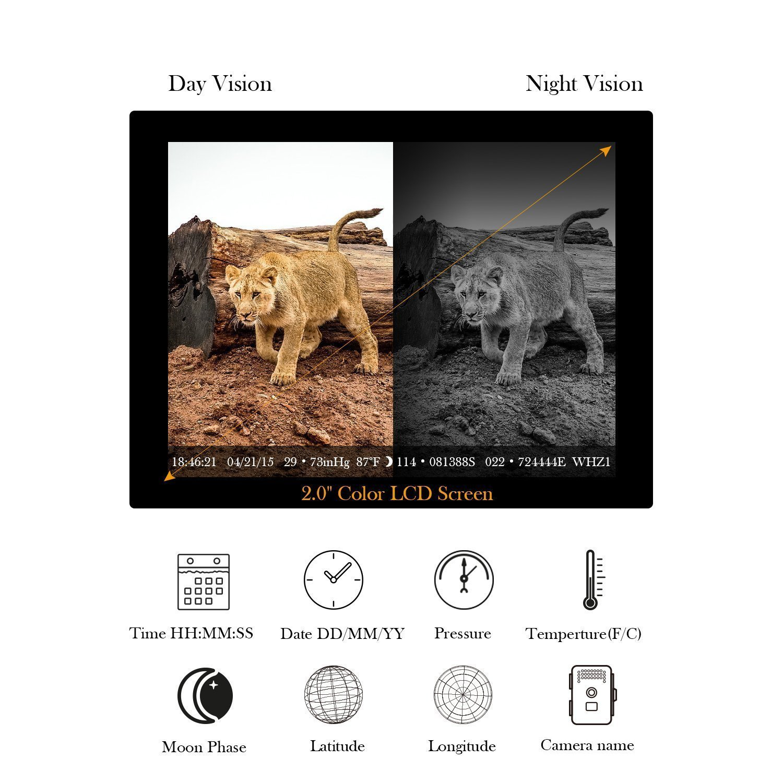 tec bean wildkamera 12mp 1080p full hd iv wildkamera. Black Bedroom Furniture Sets. Home Design Ideas